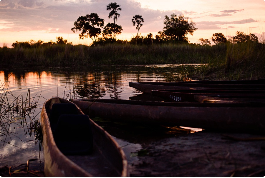 Afrika Teil1 - Von WIndhoek,Namibia nach Botswana ins Okavango Delta (101 von 118)