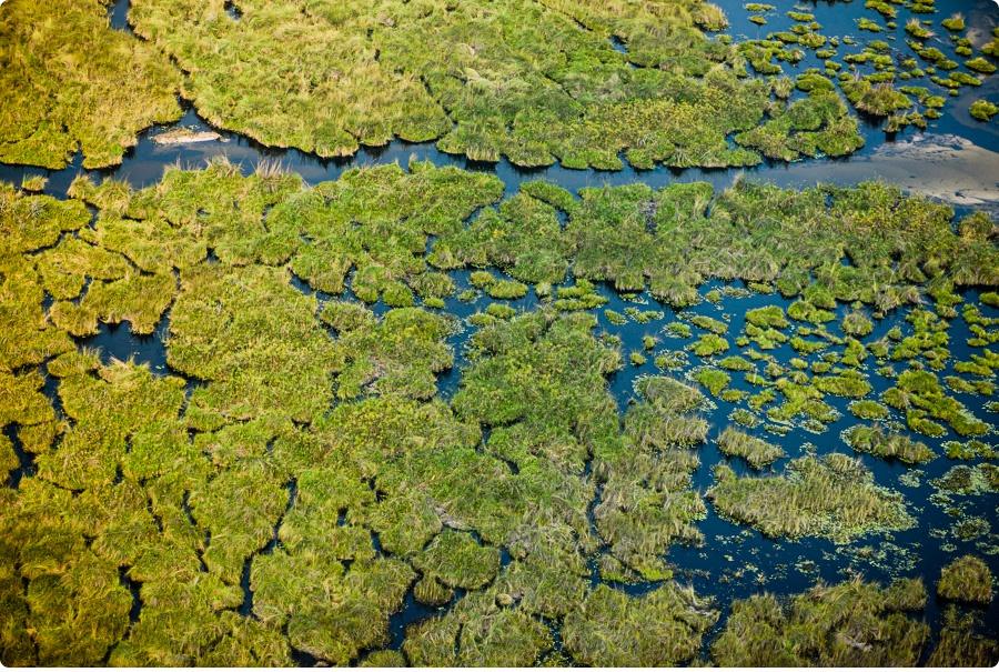 Afrika Teil1 - Von WIndhoek,Namibia nach Botswana ins Okavango Delta (29f von 9)
