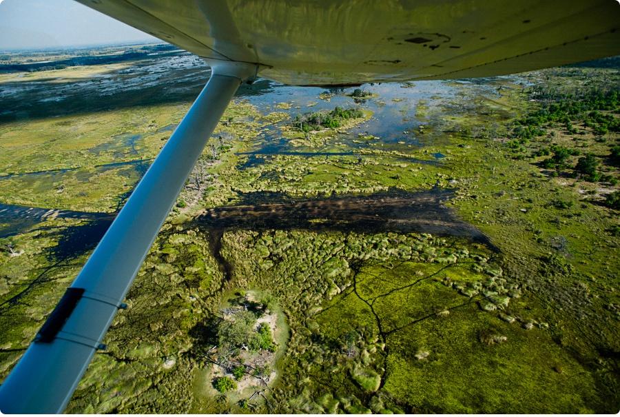 Afrika Teil1 - Von WIndhoek,Namibia nach Botswana ins Okavango Delta (29g von 9)