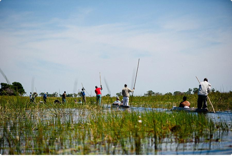 Afrika Teil1 - Von WIndhoek,Namibia nach Botswana ins Okavango Delta (38 von 118)