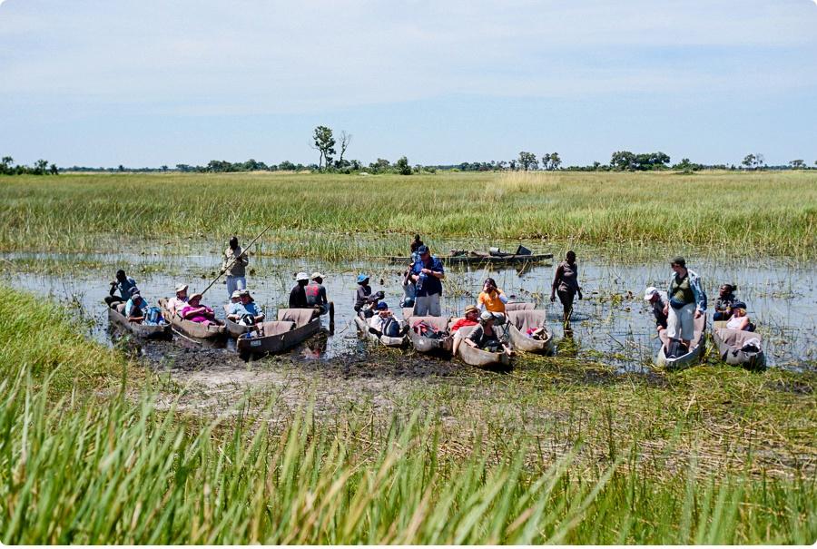 Afrika Teil1 - Von WIndhoek,Namibia nach Botswana ins Okavango Delta (42 von 118)