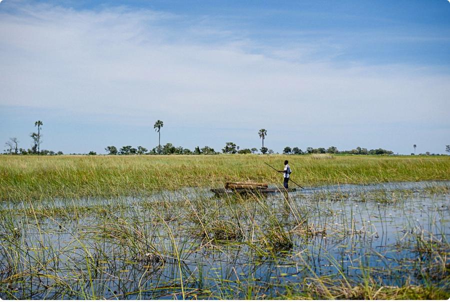 Afrika Teil1 - Von WIndhoek,Namibia nach Botswana ins Okavango Delta (43 von 118)