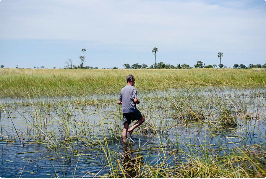 Afrika Teil1 - Von WIndhoek,Namibia nach Botswana ins Okavango Delta (44 von 118)