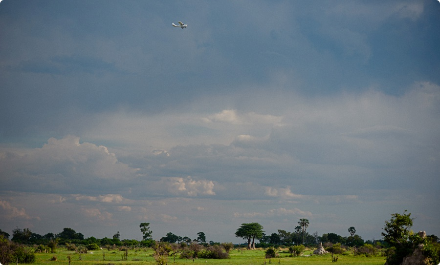 Afrika Teil1 - Von WIndhoek,Namibia nach Botswana ins Okavango Delta (68 von 118)