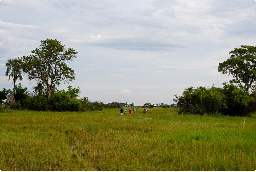 Afrika Teil1 - Von WIndhoek,Namibia nach Botswana ins Okavango Delta (71 von 118)