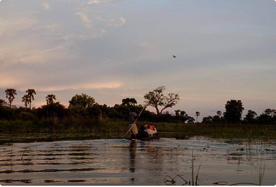 Afrika Teil1 - Von WIndhoek,Namibia nach Botswana ins Okavango Delta (87 von 118)