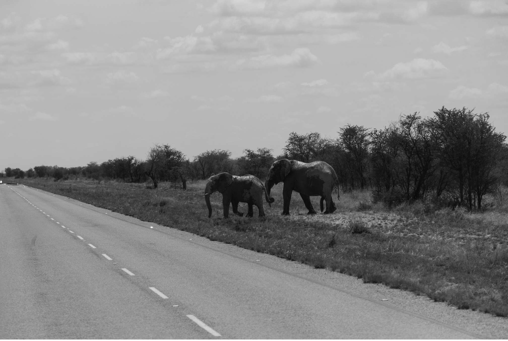 Chobe Nationalpark Botswana und Victoriafalls Zambia-2