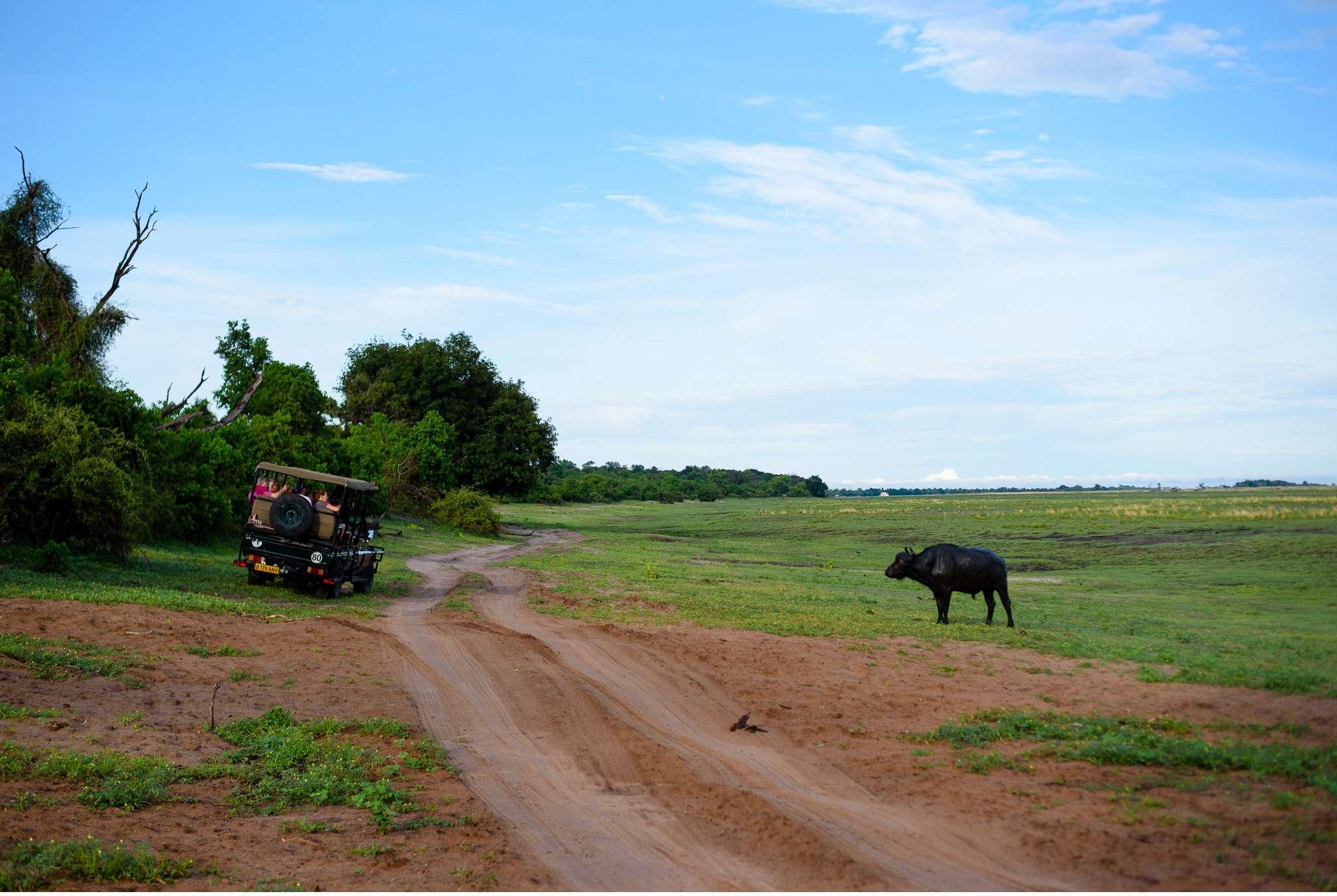 Chobe Nationalpark Botswana und Victoriafalls Zambia-25
