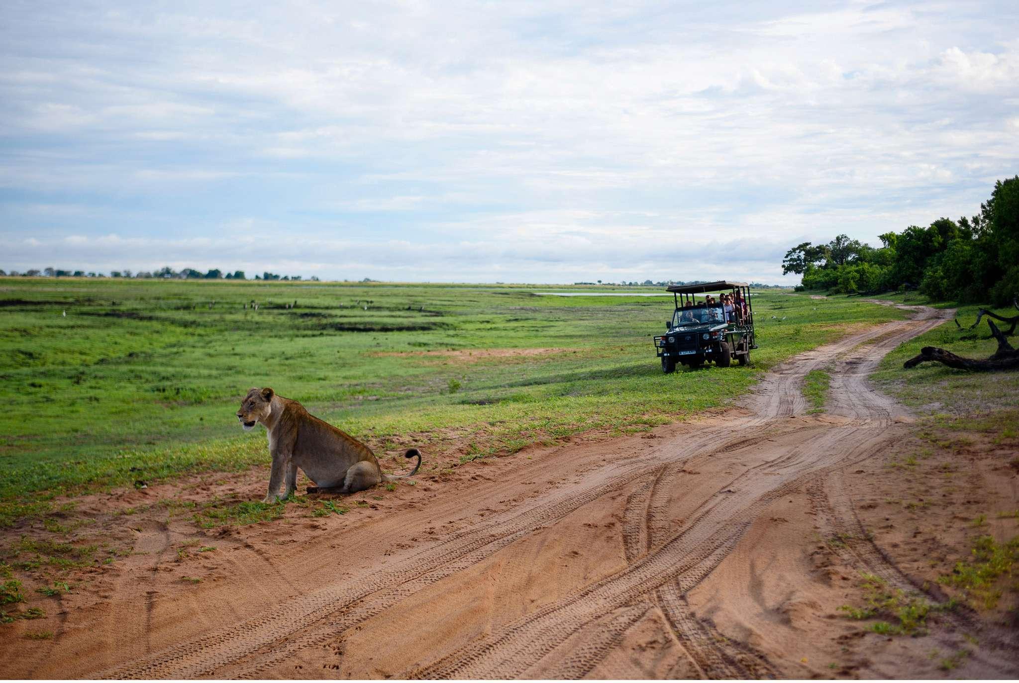 Chobe Nationalpark Botswana und Victoriafalls Zambia-30