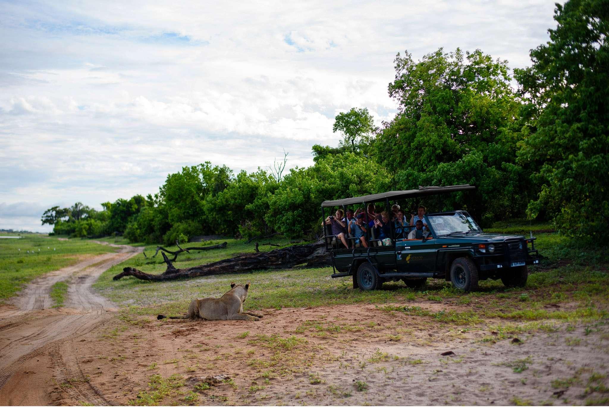 Chobe Nationalpark Botswana und Victoriafalls Zambia-31