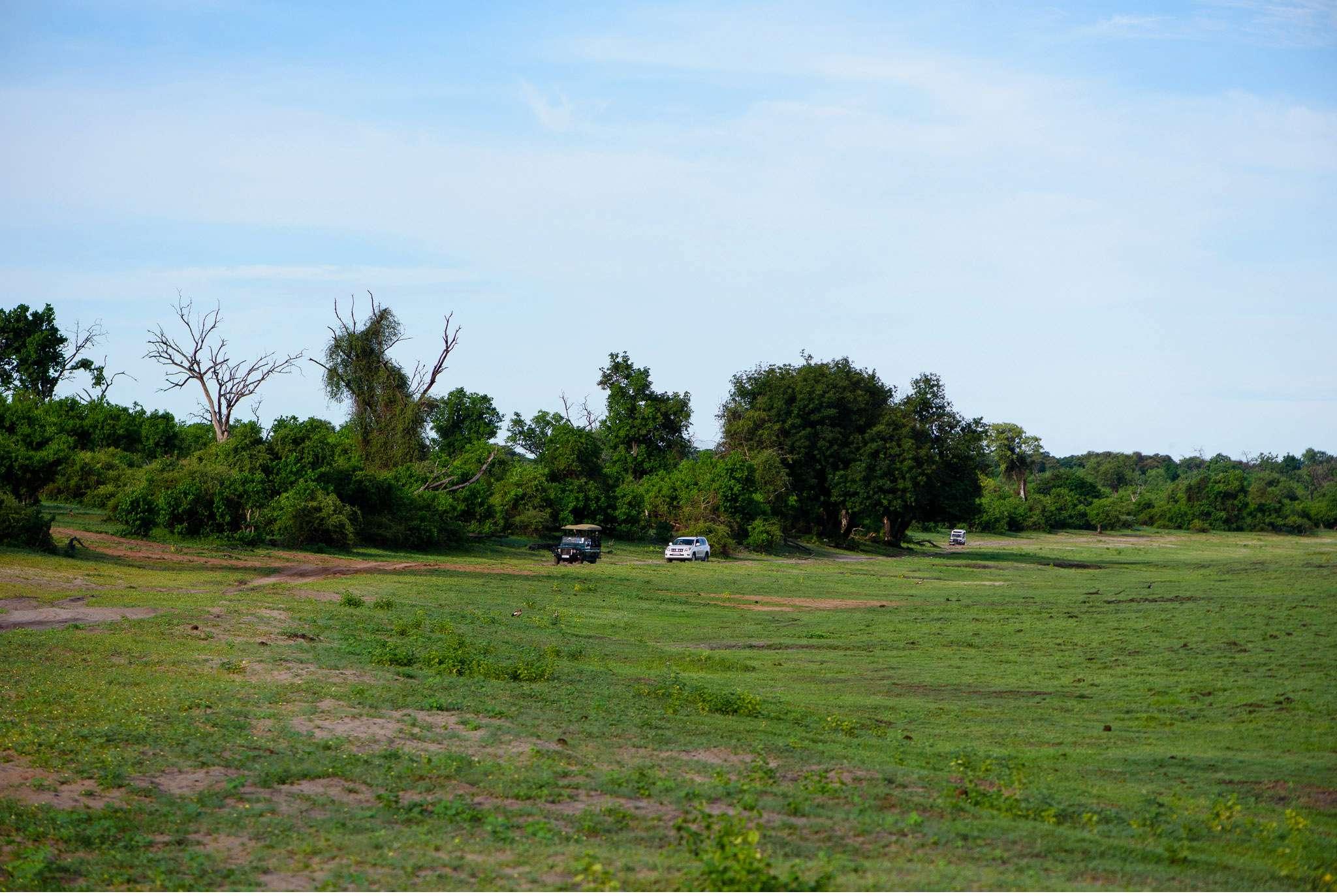 Chobe Nationalpark Botswana und Victoriafalls Zambia-35