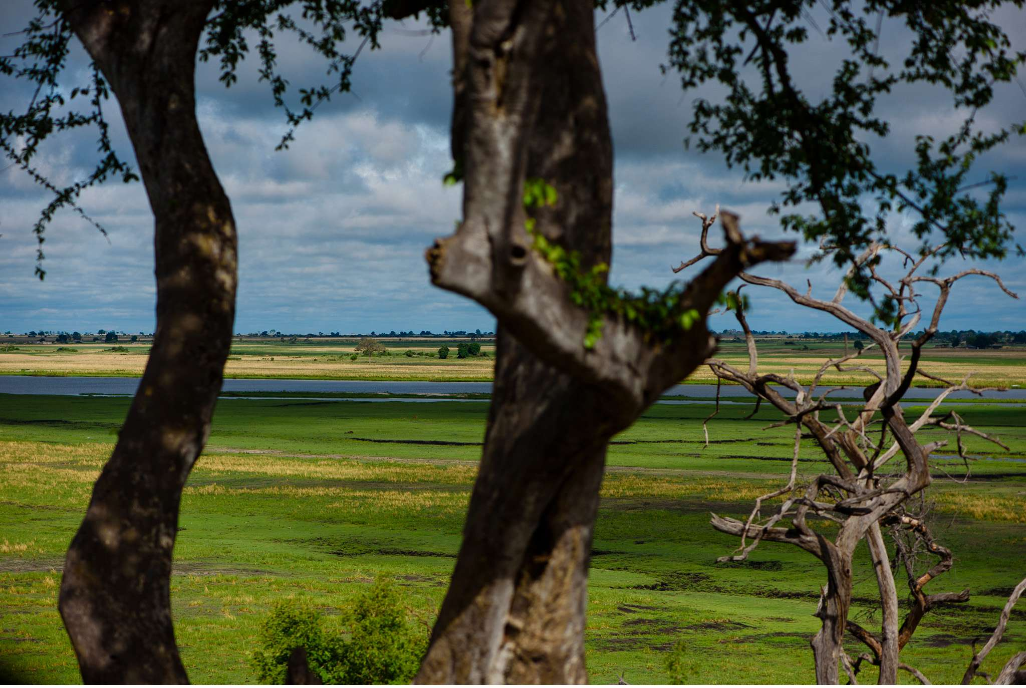 Chobe Nationalpark Botswana und Victoriafalls Zambia-53