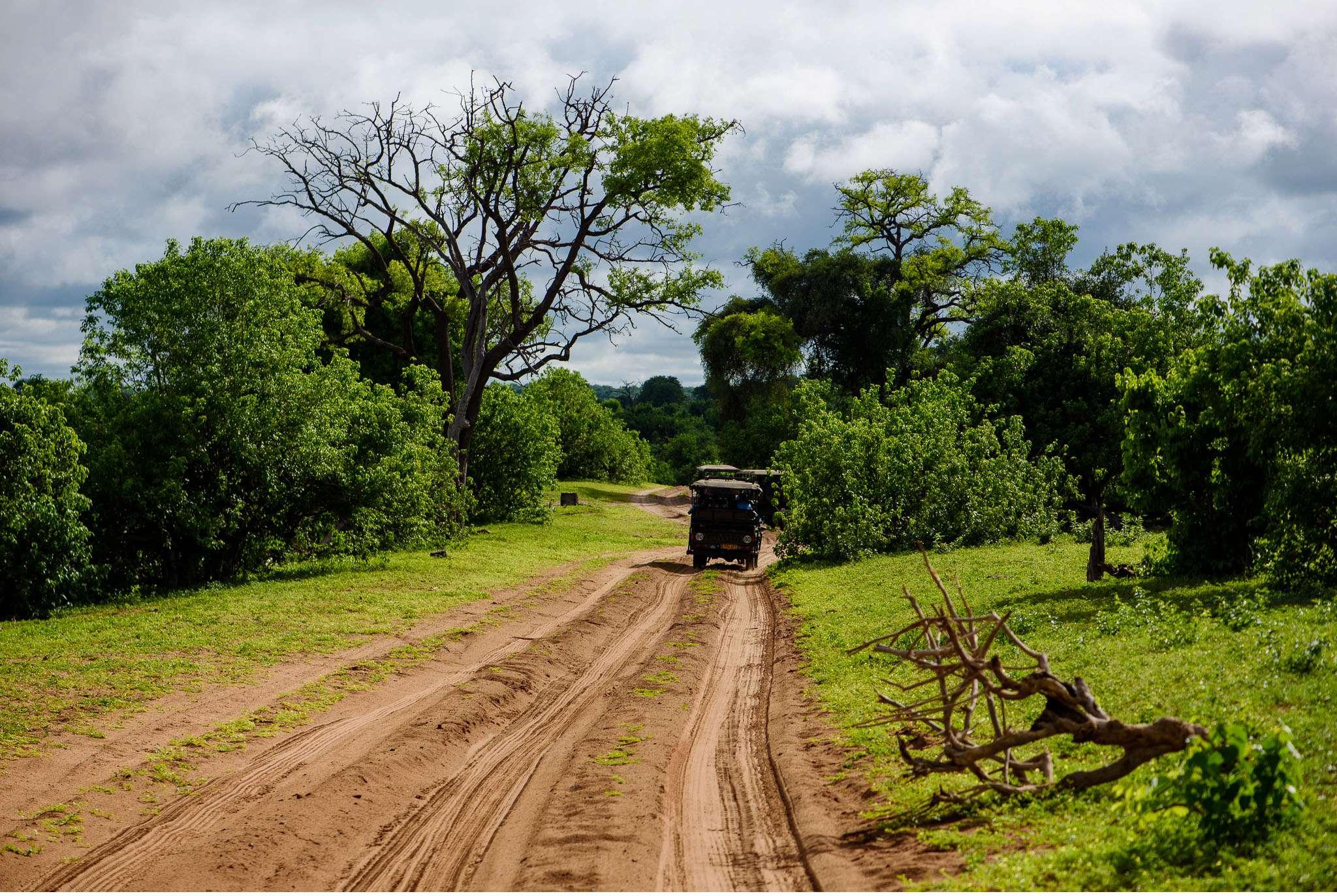 Chobe Nationalpark Botswana und Victoriafalls Zambia-54