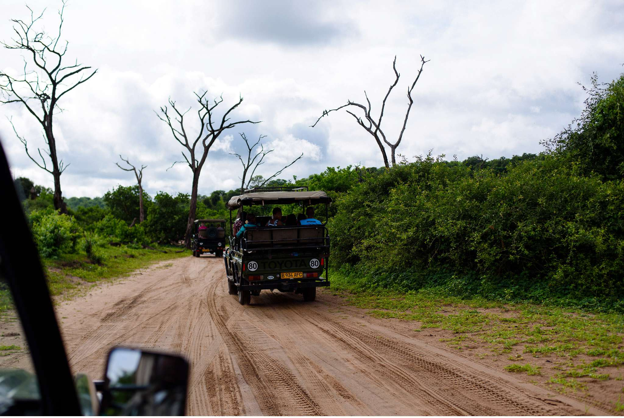 Chobe Nationalpark Botswana und Victoriafalls Zambia-56
