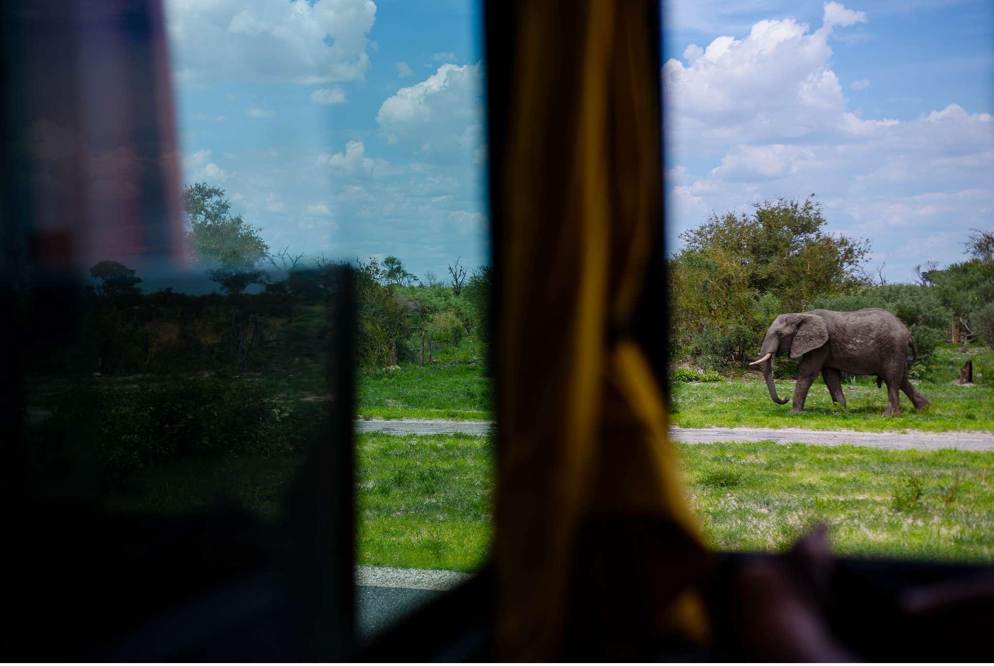 Chobe Nationalpark Botswana und Victoriafalls Zambia-6