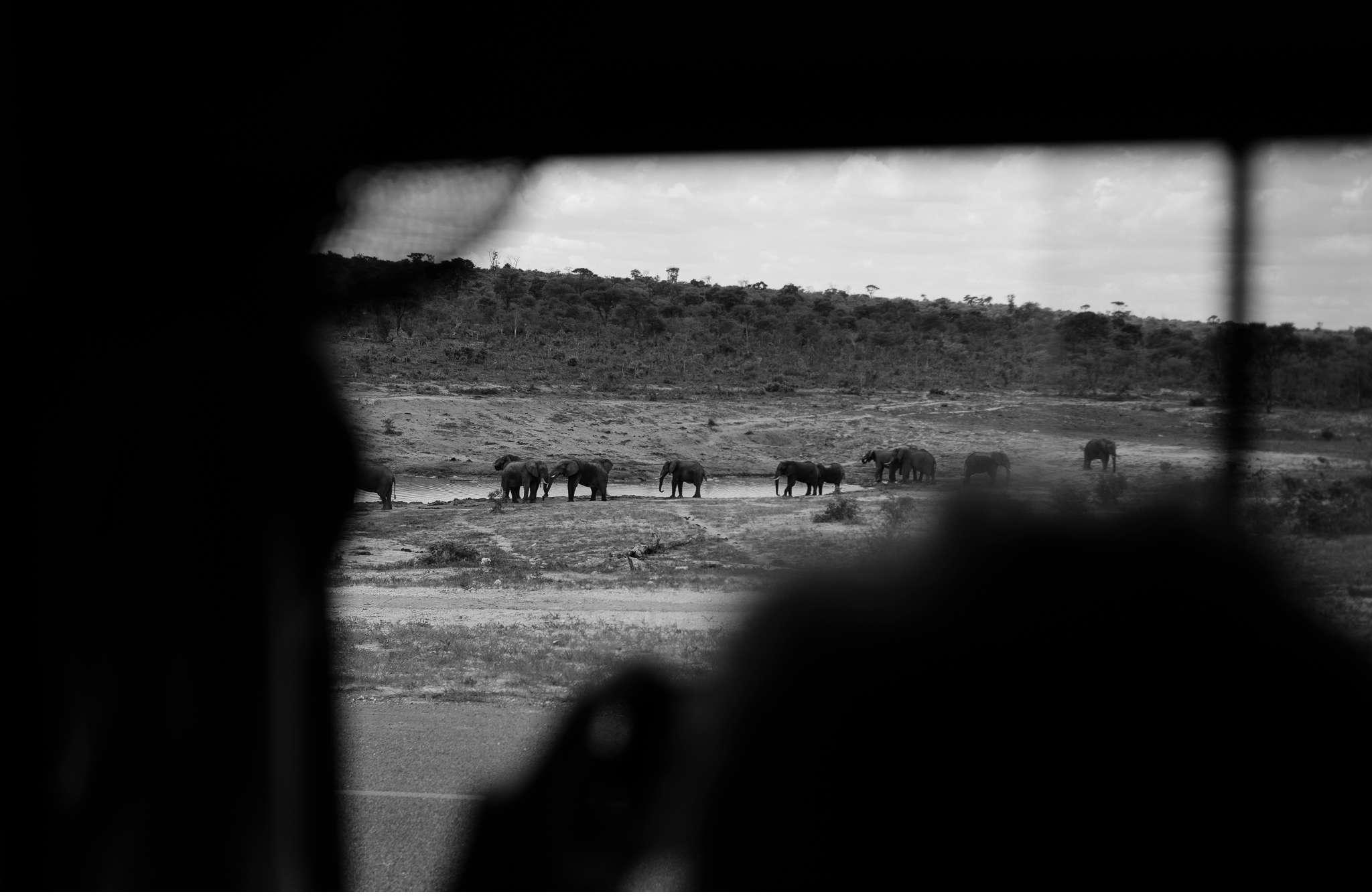 Chobe Nationalpark Botswana und Victoriafalls Zambia-7