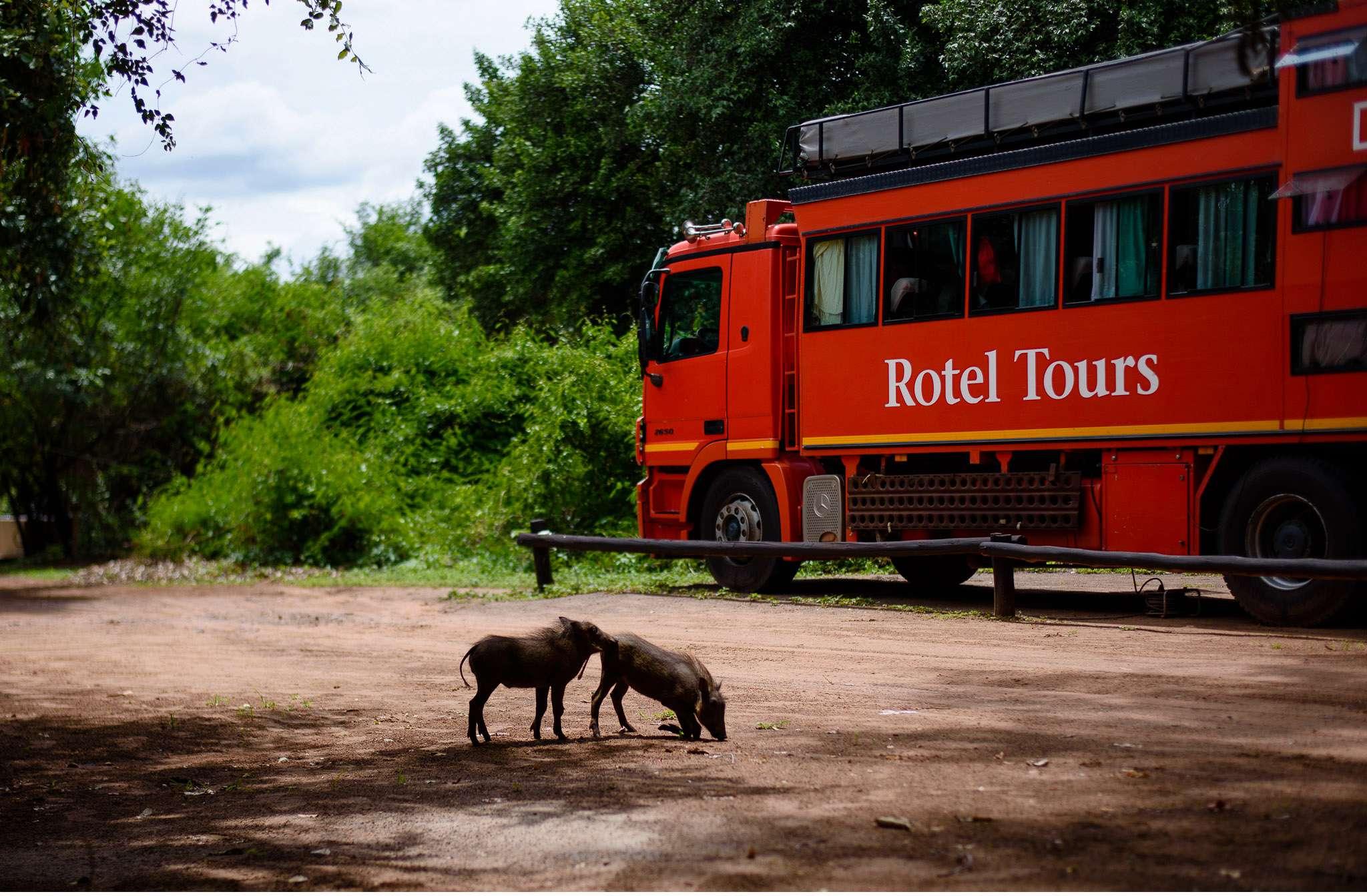 Chobe Nationalpark Botswana und Victoriafalls Zambia-72