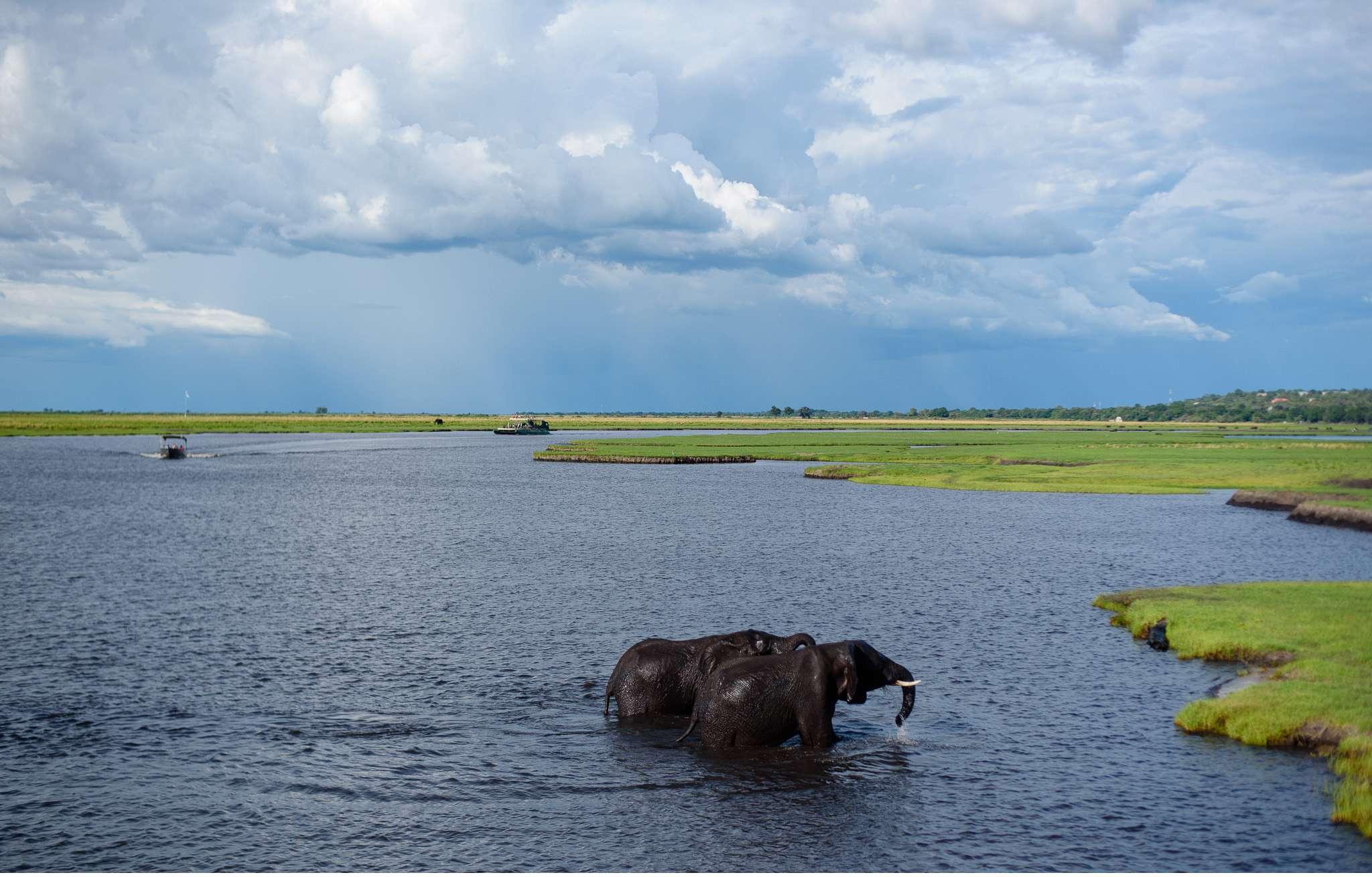 Chobe Nationalpark Botswana und Victoriafalls Zambia-81