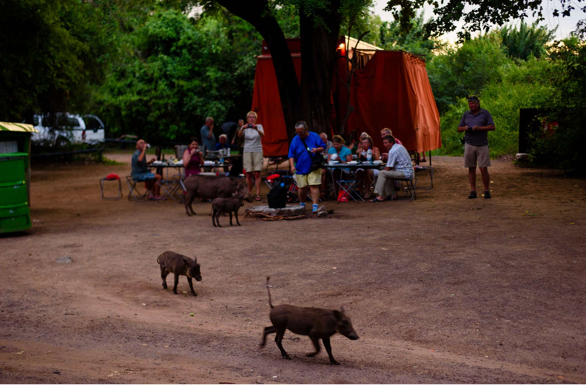 Chobe Nationalpark Botswana und Victoriafalls Zambia-83