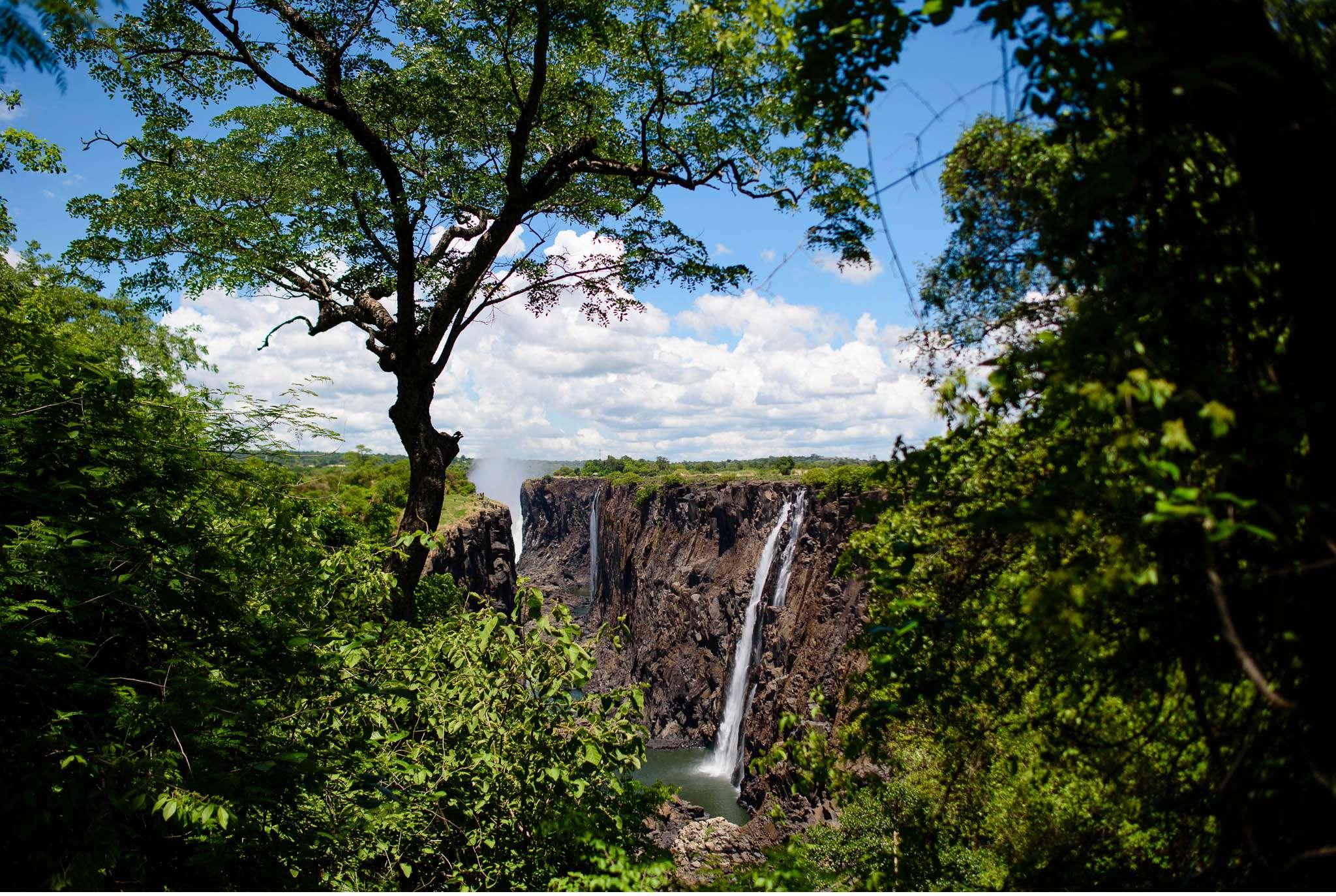 Chobe Nationalpark Botswana und Victoriafalls Zambia-89