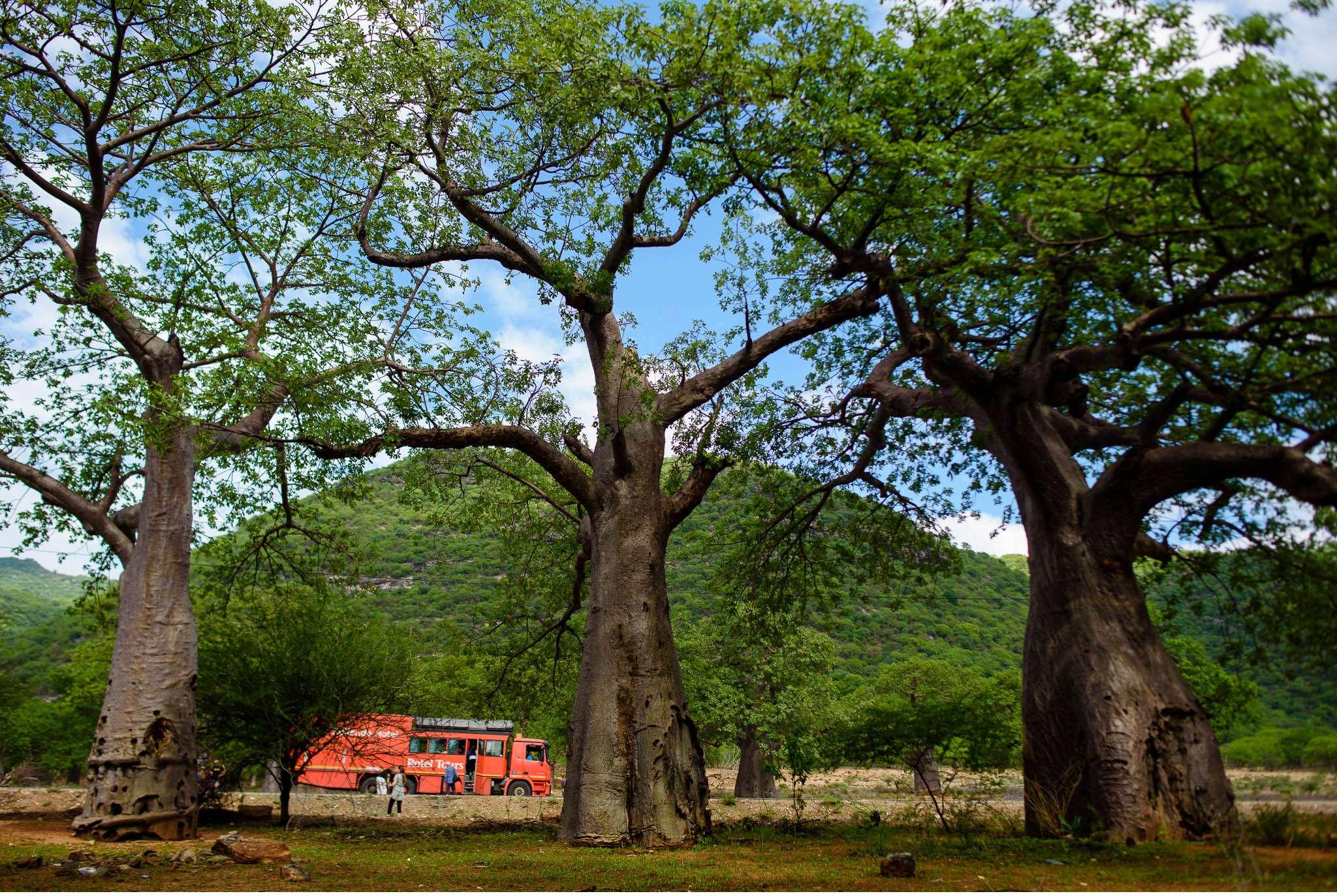 Malawi-Quer durch Afrika- Geschichten von unterwegs by Marion and Daniel-122
