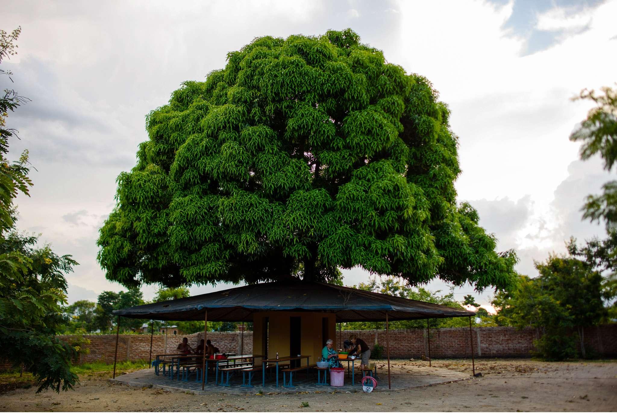 Malawi-Quer durch Afrika- Geschichten von unterwegs by Marion and Daniel-123