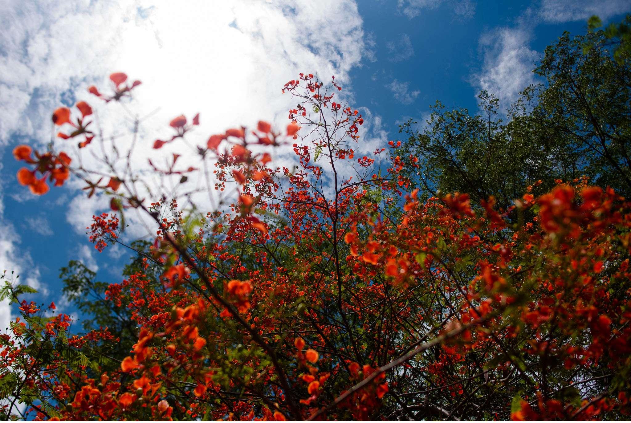 Malawi-Quer durch Afrika- Geschichten von unterwegs by Marion and Daniel-28