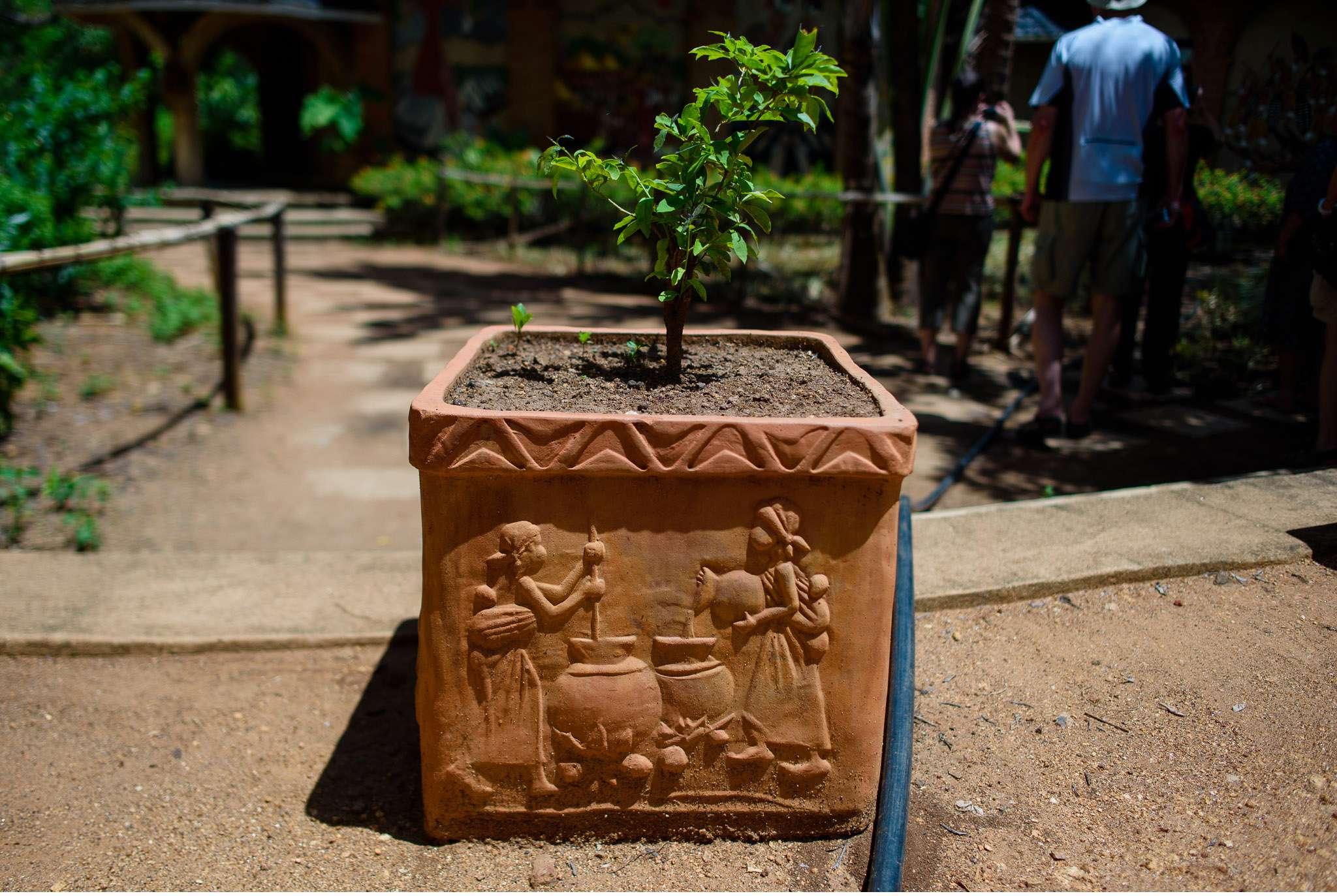 Malawi-Quer durch Afrika- Geschichten von unterwegs by Marion and Daniel-32