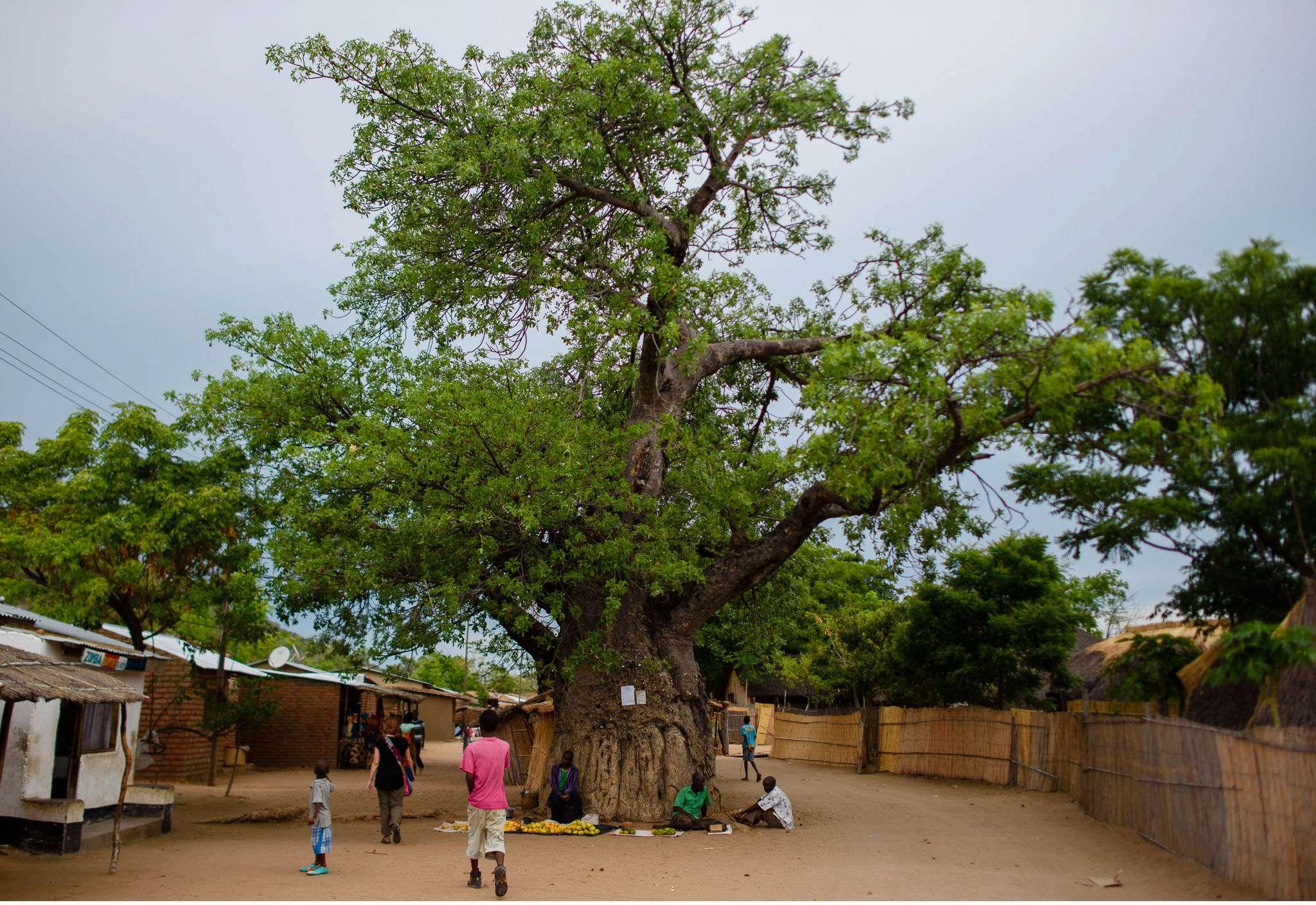 Malawi-Quer durch Afrika- Geschichten von unterwegs by Marion and Daniel-48
