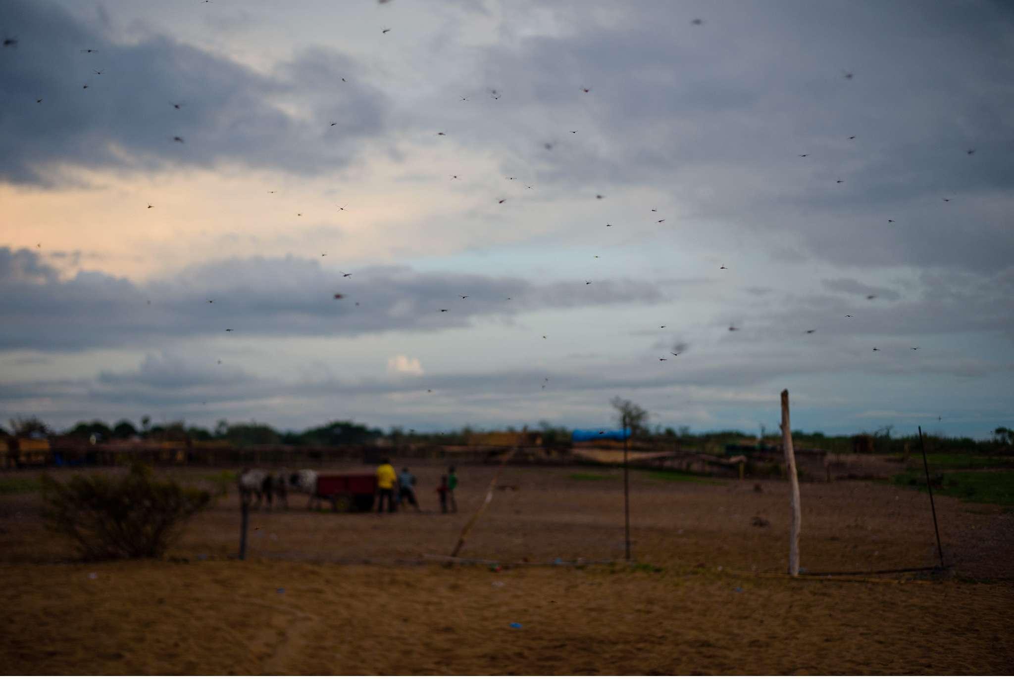 Malawi-Quer durch Afrika- Geschichten von unterwegs by Marion and Daniel-97