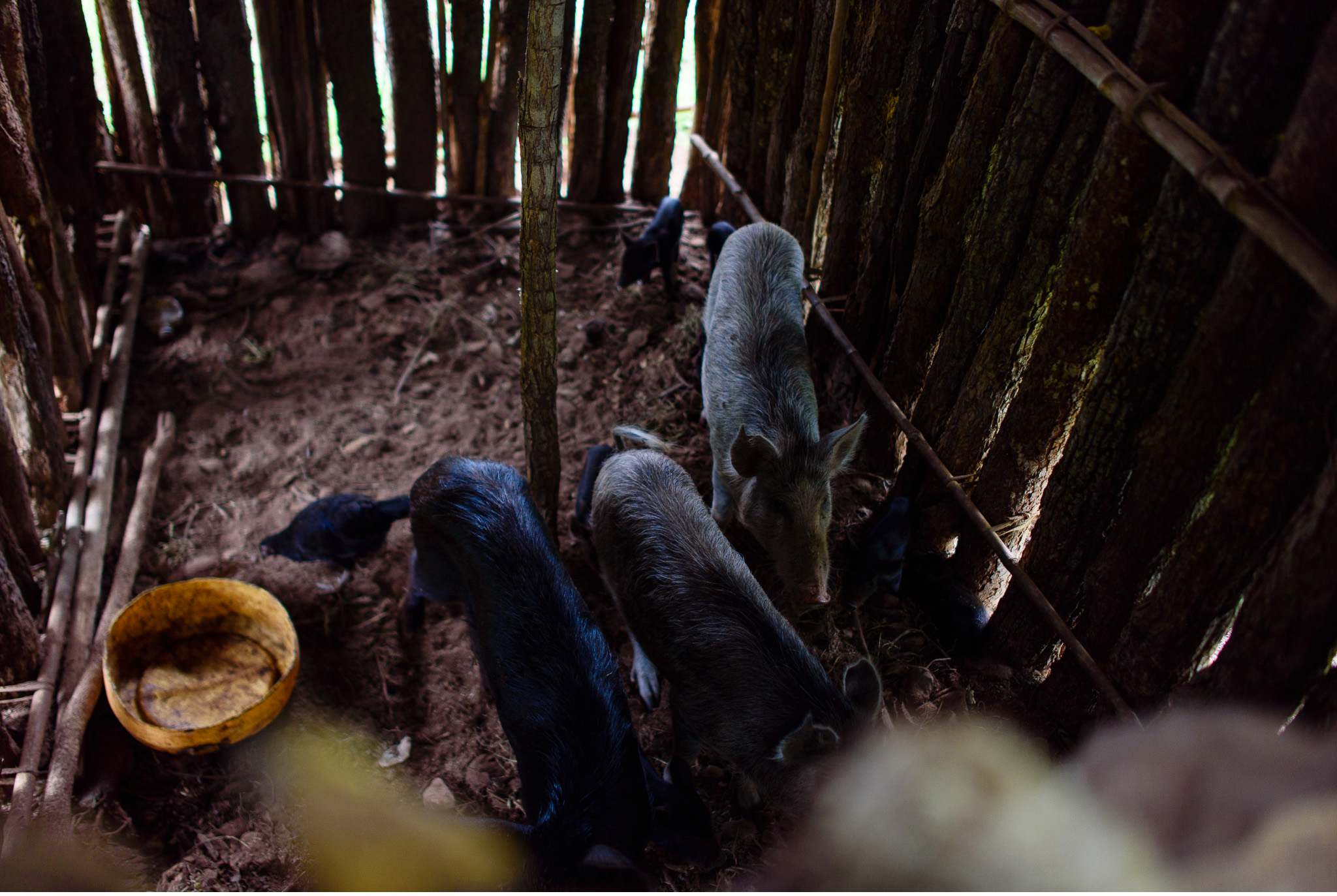 Vom South Luangwa in Zambia an den Malawi See - Marion und Daniel - Geschichten von unterwegs-10
