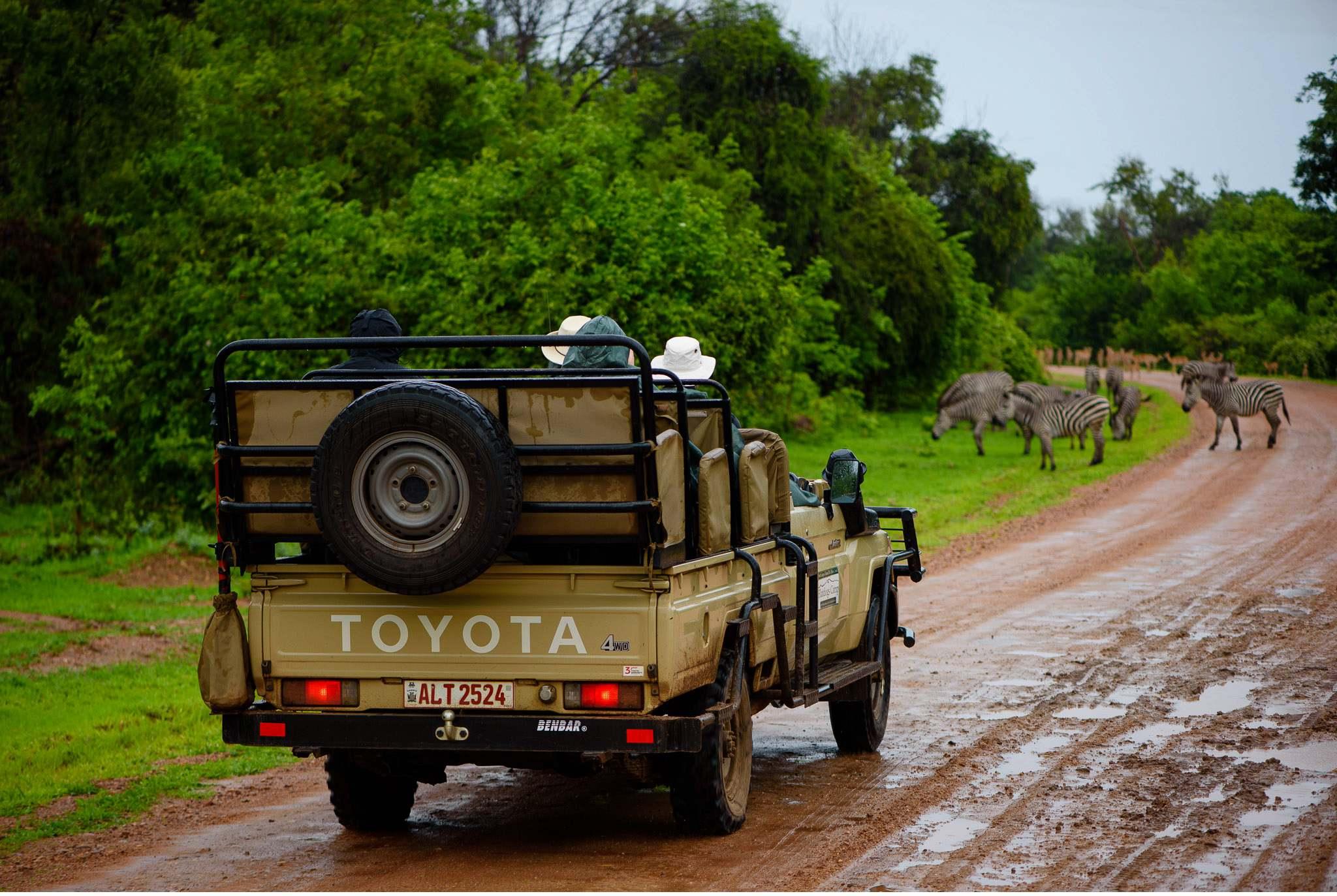 Vom South Luangwa in Zambia an den Malawi See - Marion und Daniel - Geschichten von unterwegs-39