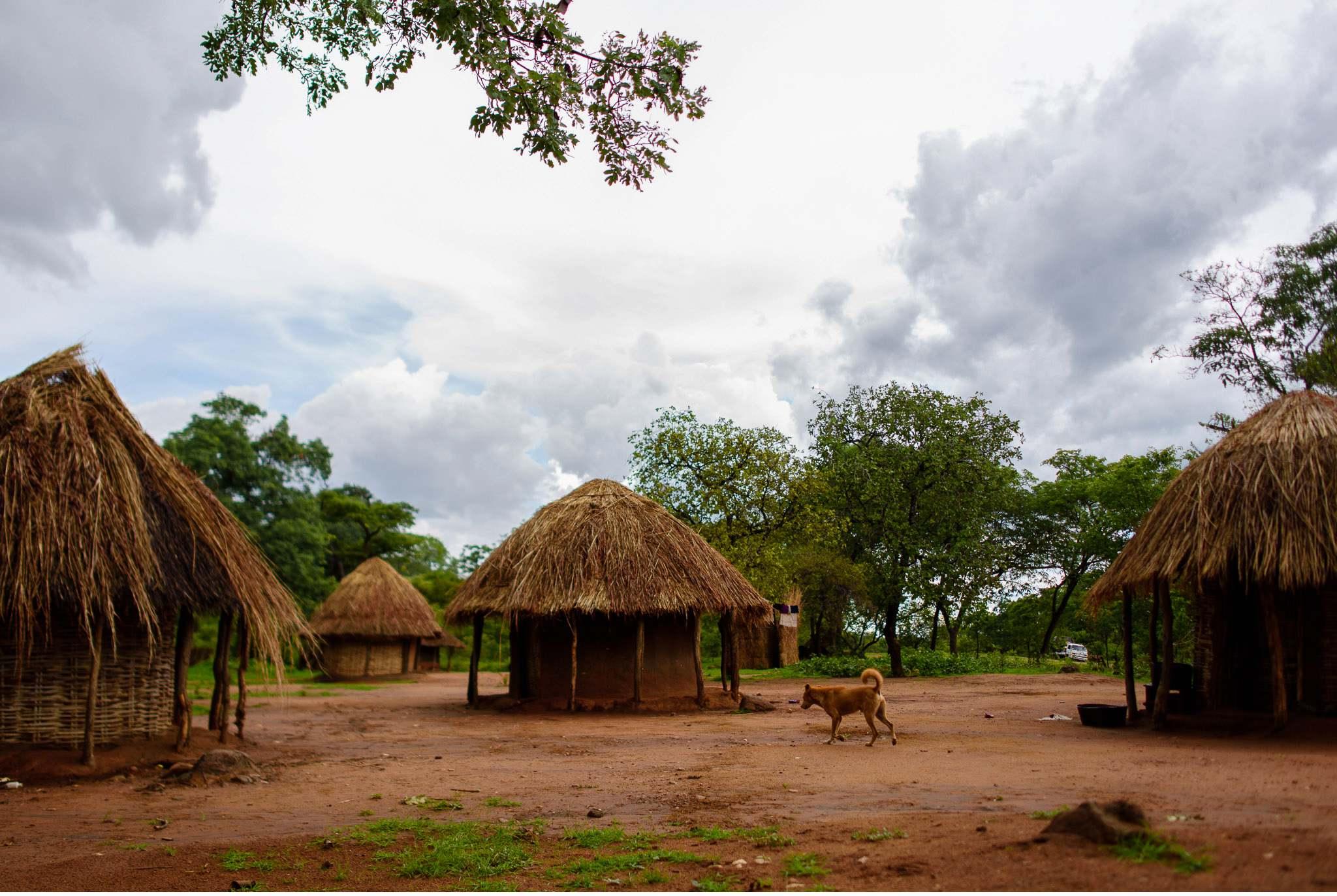 Vom South Luangwa in Zambia an den Malawi See - Marion und Daniel - Geschichten von unterwegs-5