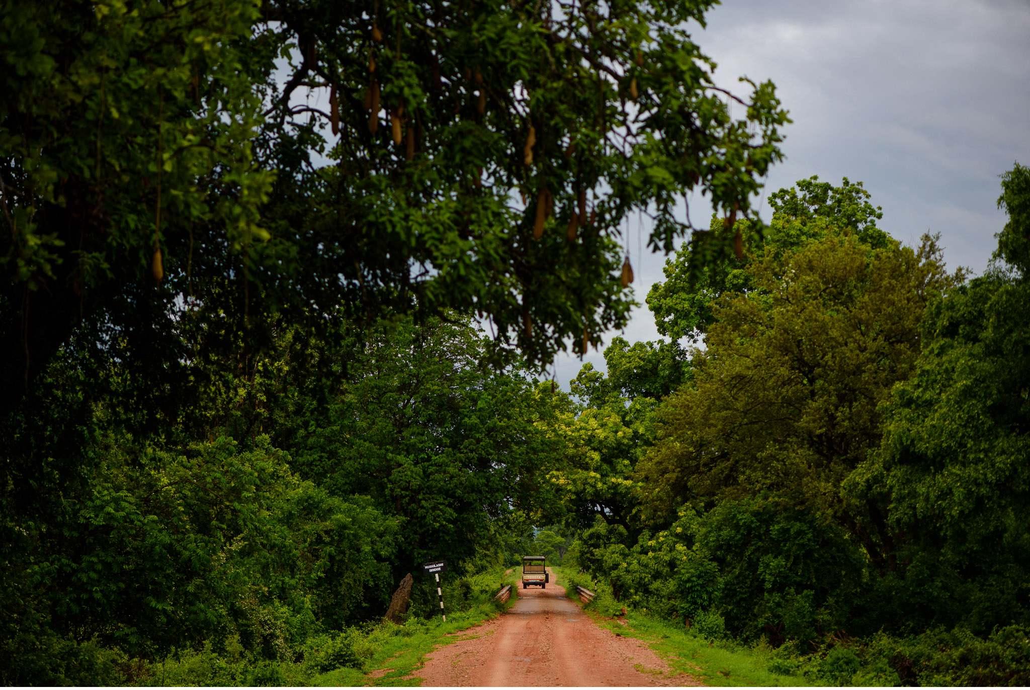 Vom South Luangwa in Zambia an den Malawi See - Marion und Daniel - Geschichten von unterwegs-51