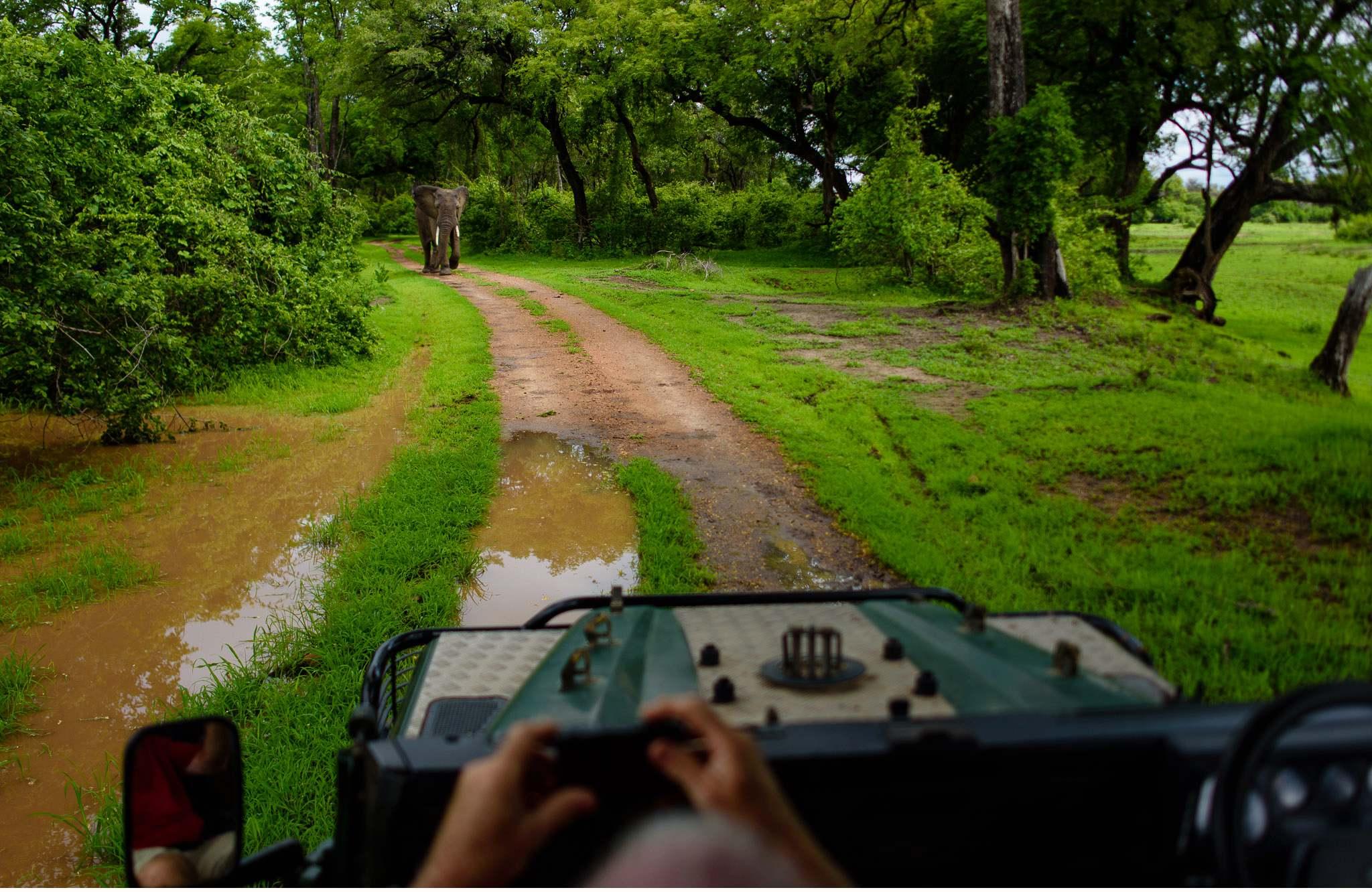 Vom South Luangwa in Zambia an den Malawi See - Marion und Daniel - Geschichten von unterwegs-71