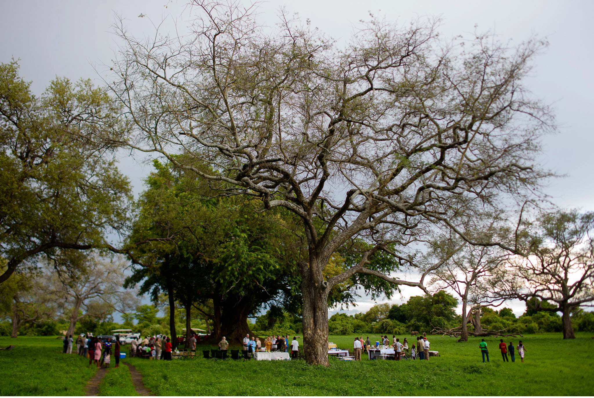 Vom South Luangwa in Zambia an den Malawi See - Marion und Daniel - Geschichten von unterwegs-78
