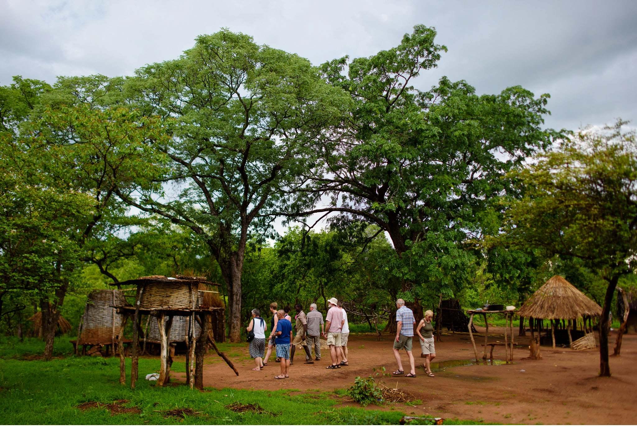 Vom South Luangwa in Zambia an den Malawi See - Marion und Daniel - Geschichten von unterwegs-8