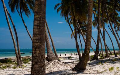 Sansibar – Tropisches Paradies im indischen Ozean