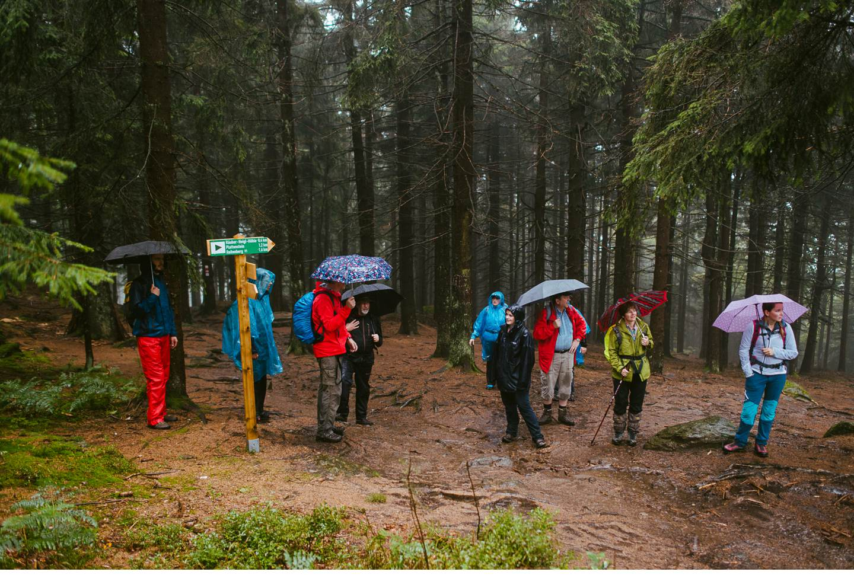goldsteig-bayrischer-wald-top-trails-of-germany-15-von-70