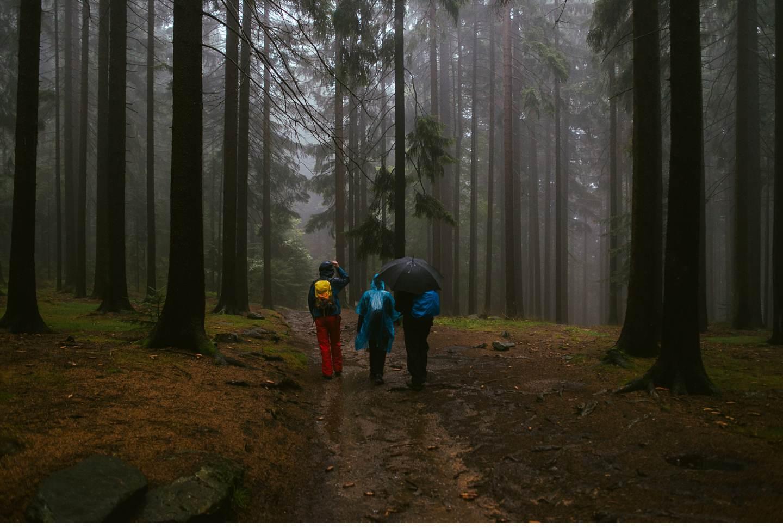 goldsteig-bayrischer-wald-top-trails-of-germany-2-von-70