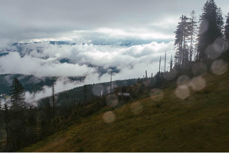 goldsteig-bayrischer-wald-top-trails-of-germany-51-von-70