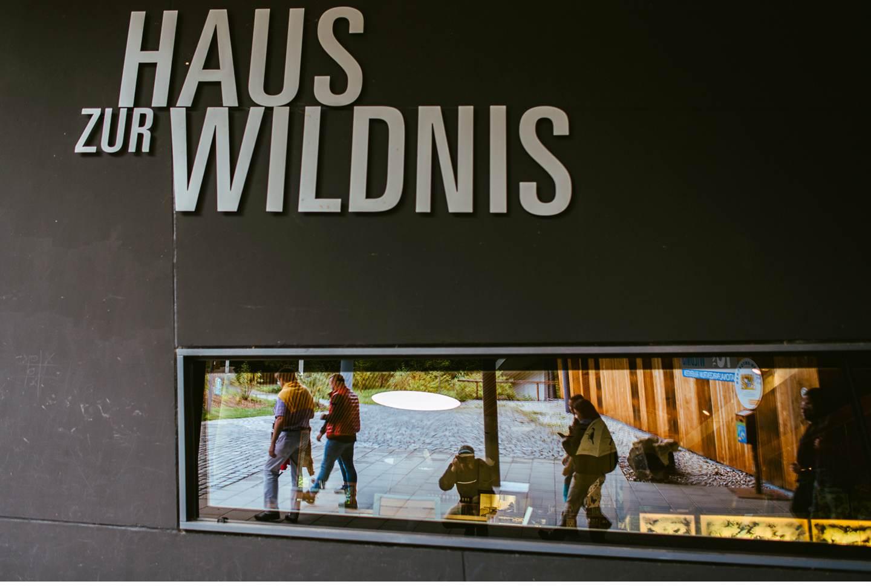 goldsteig-bayrischer-wald-top-trails-of-germany-60-von-70