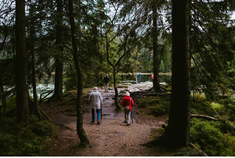 goldsteig-bayrischer-wald-top-trails-of-germany-66-von-70