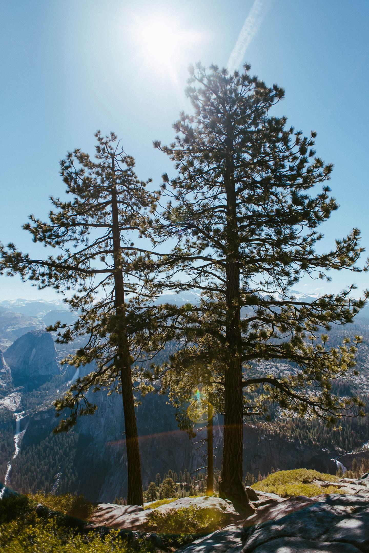 yosemite-nationalpark-california-15