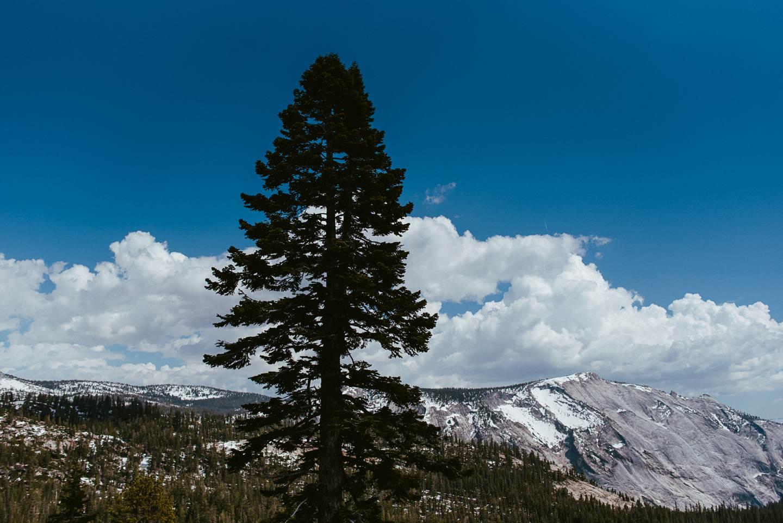 yosemite-nationalpark-california-53