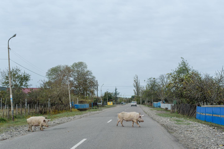 roadtrip-durch-georgien-geschichten-von-unterwegs-63