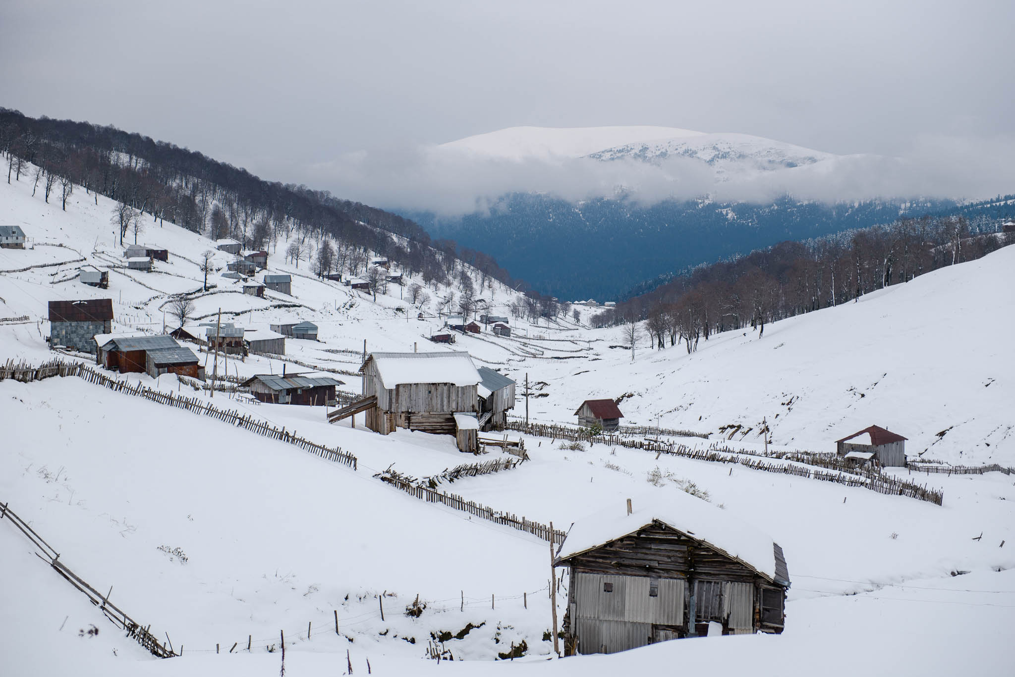 schnee-gordedzi-pass-georgien-1