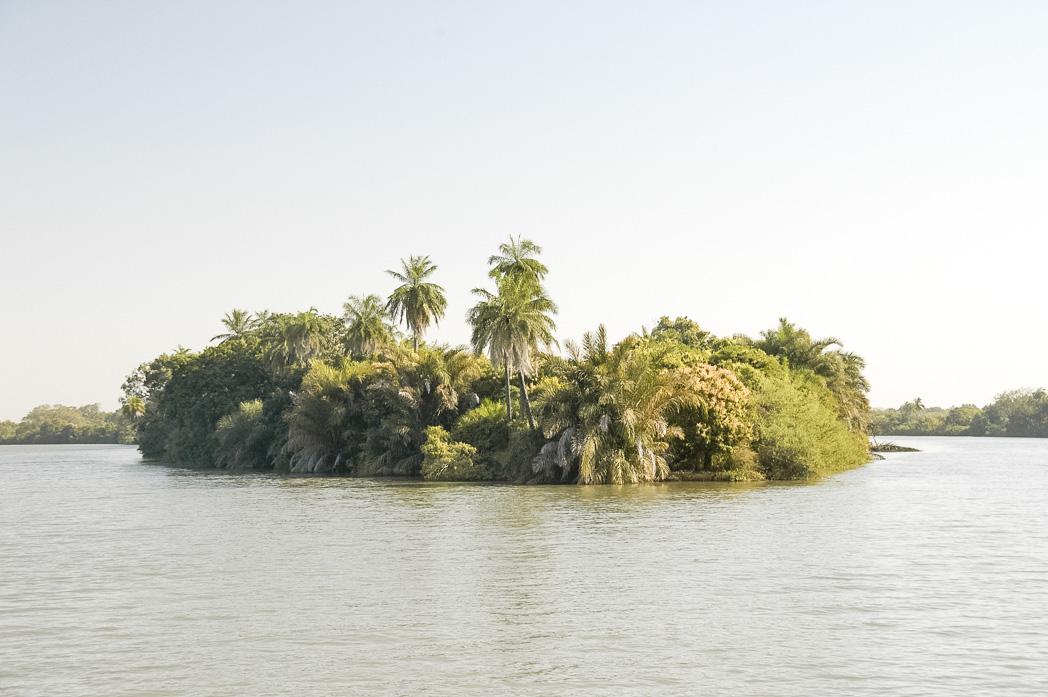 Senegambia- Eine Reise rund um Afrika-55