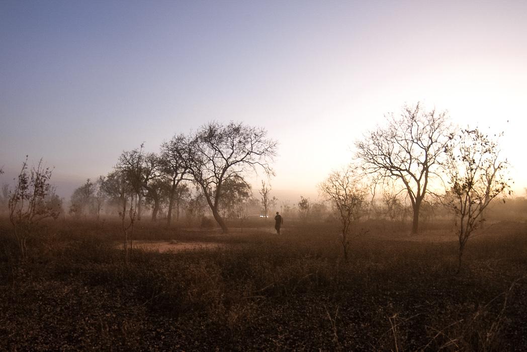 Senegambia- Eine Reise rund um Afrika-59