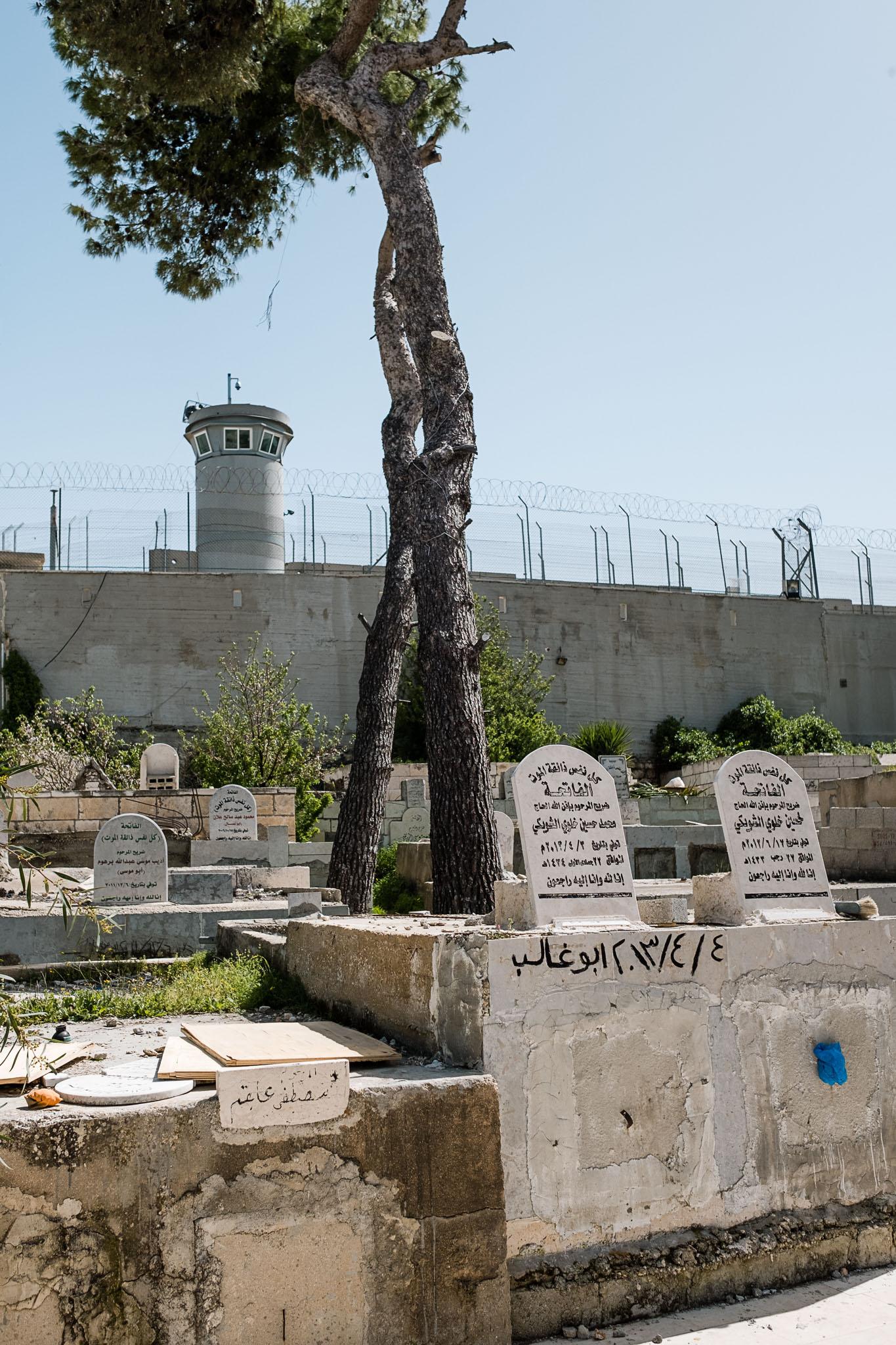 Banksy - Walled Off Hotel - Bethlehem - Palestine (203 von 4)